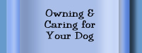 Owning and Caring for your dog